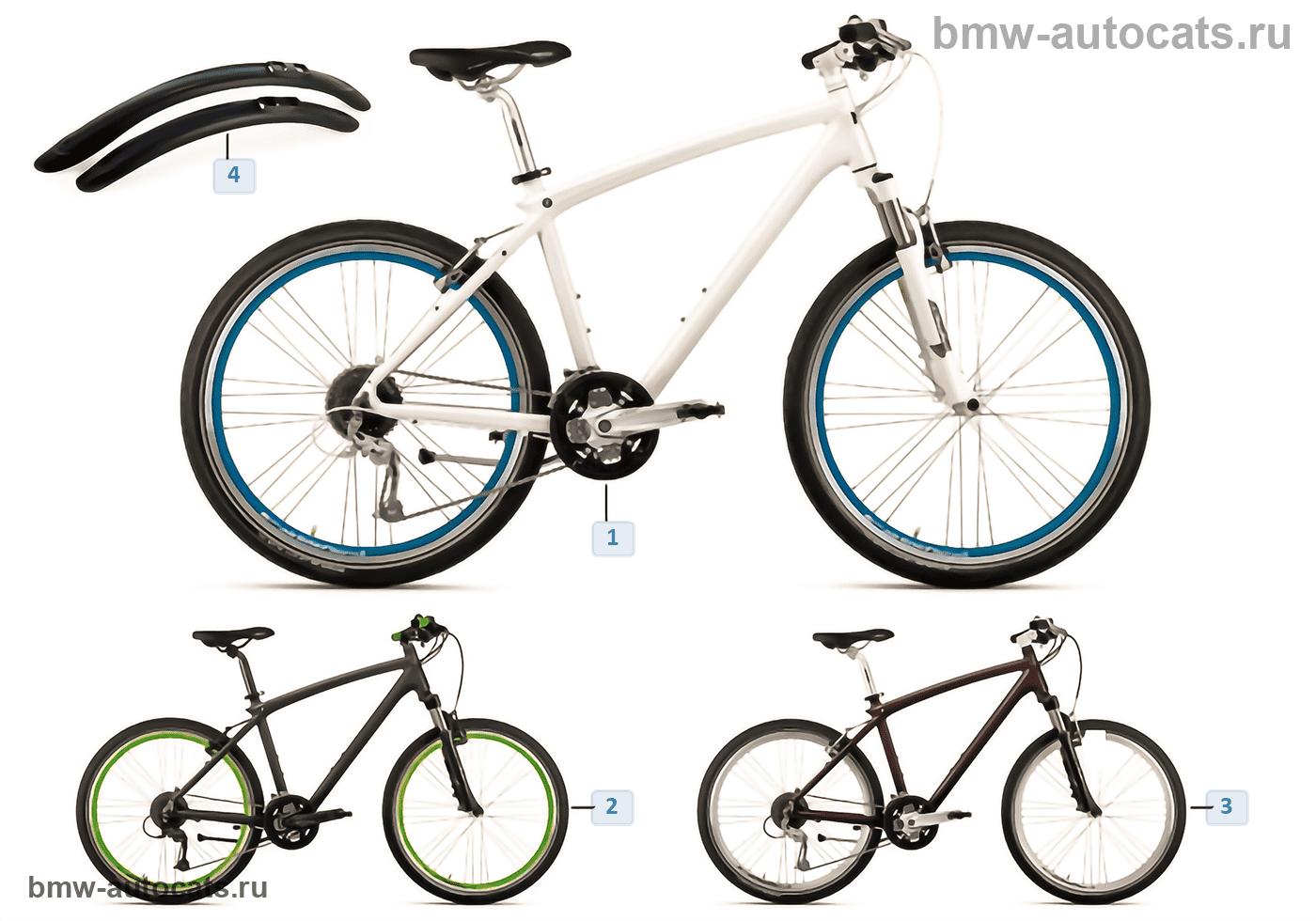Bikes & Equipment-Cruise Bike 2013/14